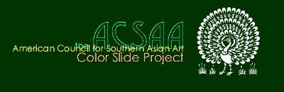 acssa-colorSlideProject-400